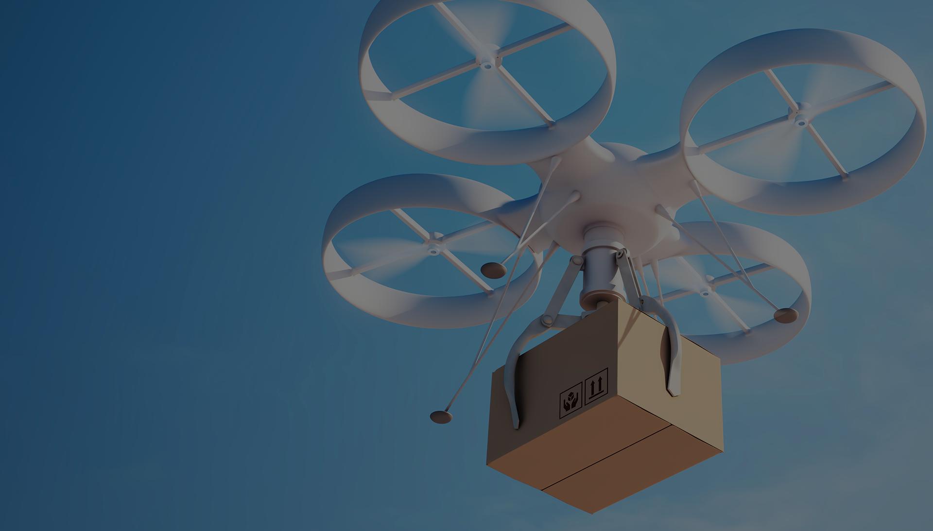 Cargo Control Company Drone